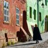 Expoziția anuală a membrilor Asociației Internaționale - Euro Foto Art, 10 ani de existență