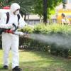 Începând de miercuri - Lucrări de dezinsecție în Oradea