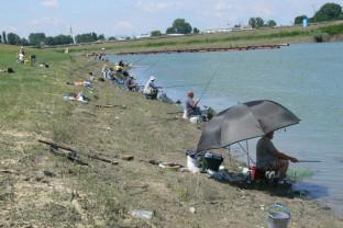 Asociația Județeană a Vânătorilor și Pescarilor Sportivi Bihor - Cotizațiile pentru pescuitul sportiv nu au fost majorate!