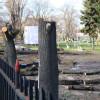 Defrişările din Parcul Bălcescu - Primăria se spală pe mâini