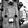 În Cetatea Medievală Oradea - Lagărul Auschwitz, fotografii din iad pe pământ