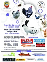 """Vadu Crișului - """"Cupa Crişana 2019"""""""