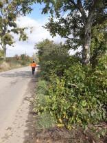 Curățenie pe drumurile județene - Utilajele au acţionat în zona Săcueni