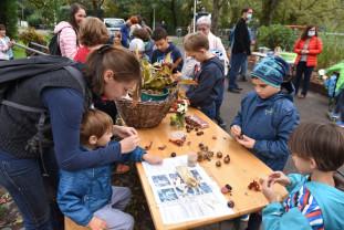 Fața frumoasă a toamnei în Parcul Libertății - Festivalul Castanelor, la Oradea