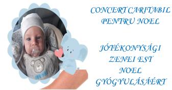 Vineri, 22 noiembrie, la Biserica Sfântul Ladislau - Concert caritabil pentru Noel