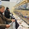 Expoziția Națională Columbofilă a României - Oradea, capitala campionilor zburători