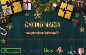 """Proiectul """"Gaudio Magia"""" - Surpriza din cutia fermecată"""