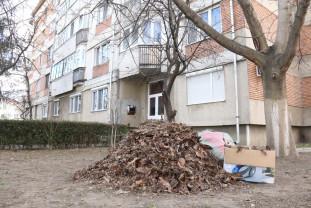 Obligarea Asociaţiilor de proprietari să preia spaţiile verzi publice s-ar putea muta în instanță - Lege și... fărădelege!