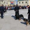 Exerciţii demonstrative şi paradă militară la 100 de ani de la înfiinţare - Centenarul Jandarmeriei bihorene