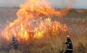 Weekend plin pentru pompieri bihoreni - Câmpuri în flăcări