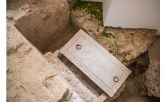 Muzeul Orașului Oradea – Complex Cultural - Expoziții temporare și permanente inedite