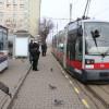 Mijloacele de transport în comun au circulat, ieri, fără întreruperi - Sindicaliştii OTL au renunţat la grevă