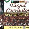Un eveniment mult aşteptat la Lugaşu de Jos - Târgul Corvinilor - Târgul de 500 de ani
