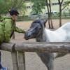 Grădina Zoologică - Noul program de vizitare