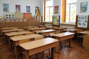 Academia Română: Pentru ciclurile preșcolar și primar, educaţia se face în clasă - Şcoala on-line, nepotrivită