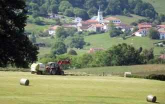 După trei ani de negocieri - Statele UE aprobă reforma Politicii Agricole Comună