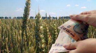 MADR. Ajutoarele naționale tranzitorii din sectorul vegetal