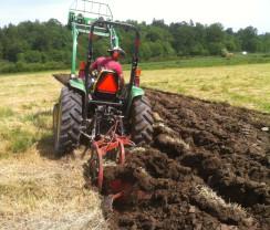 Veniturile din arendarea bunurilor agricole - Contribuţii sociale obligatorii