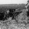 100 de ani. Marşul spre Marea Unire (1916-1919) - Bătălia de la Mărăşeşti (III)