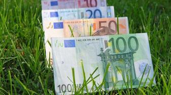 AFIR: Fonduri europene – Asigurarea culturilor agricole