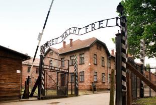 Ziua Internațională de Comemorare a victimelor Holocaustului - 75 de ani de la eliberarea Auschwitzului