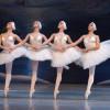 Cel mai faimos balet al tuturor timpurilor, Lacul Lebedelor, la Casa de Cultură