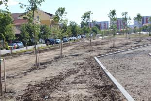 Amenajare de coridoare verzi în Oradea - Cinci parcuri sunt în lucru