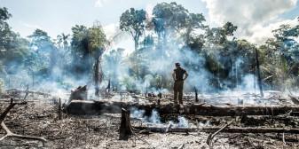 G7 a oferit un ajutor uriaş pentru Brazilia afectată de incendii - Au respins oferta cu dispreţ