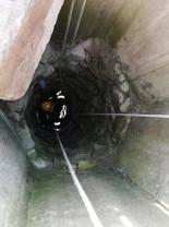 Caine căzut în fântână - Salvat de pompieri