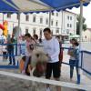 De ziua lor - Copiii au cucerit Cetatea Oradea