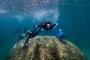 """În vârstă de 400 de ani - Coral """"neobişnuit de mare"""" descoperit în Marea Barieră de Corali"""