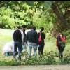 Valea lui Mihai - Bărbat cu beregata tăiată descoperit în parc