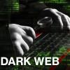 Website-uri care vindeau droguri, arme şi acte, închise - Internetul negru, desfiinţat