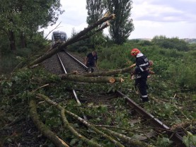 Mai multe localități din Bihor au fost sub Cod Portocaliu de vijelii - Acoperiș smuls de vânt și tren blocat de un copac