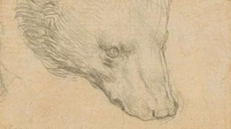Ar putea fi vândut pentru 12 milioane de lire sterline - Desen al lui Leonardo da Vinci