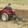 APIA. Sprijinul cuplat vegetal - Primele termene pentru subvenţii