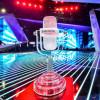 Duminică vor fi stabiliţi cei 15 semifinalişti - Selecţia Naţională Eurovision