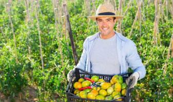 MADR. Din august, depunerea cererilor - Sprijin de 15.000 de euro pentru fermele mici