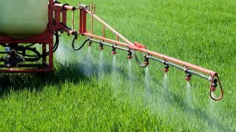 Buletin de avertizare fitosanitar - Tratamente la cereale păioase