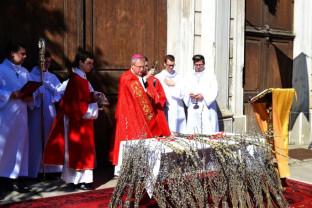 Credincioşii catolici sărbătoresc duminică Floriile - Binecuvântarea ramurilor, la Catedrală