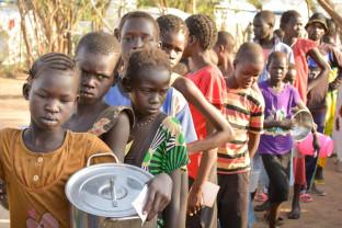 Raportul global anual privind crizele alimentare şi pandemia - O catastrofă alimentară iminentă