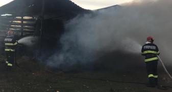 Flăcările au izbucnit, cel mai probabil, din cauza neglijenţei angajaţilor - Incendiu violent la o fabrică de mobilă din Popești