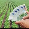 AFIR alocă fonduri - Asigurarea culturilor agricole şi animalelor