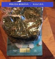 Descinderi la domiciliile a 13 persoane - Percheziţii la traficanţii de droguri