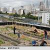 """Poștașii francezi s-au apucat de agricultură urbană - """"Fermă"""" pe acoperişul Poştei"""