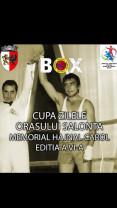 """Cupa Zilele Orașului Salonta – Memorial Carol Hajnal - """"Meciuri benefice pentru verificarea pregătirii"""""""