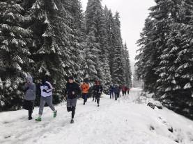 Handbaliştii pun bazele pregătirii fizice - CSM Oradea, în cantonament la Stâna de Vale