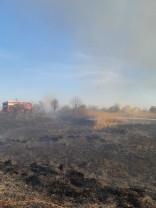 Oradea și Ghiorac - Incendii de vegetație uscată