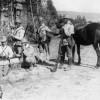 Marşul spre Marea Unire (1916-1919) - Acţiunile Diviziei 11 Infanterie pe Valea Jiului (III)