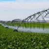 MADR: În domeniul irigaţiilor, un nou ajutor de minimis pentru fermieri